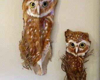 Pair of Burrowing Owls.