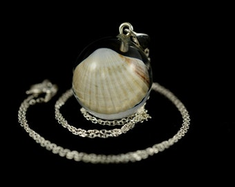 Pendant with natural shell in resin sphere on a silver chain. Resin jewelry. Natural shell in resin. Sphere 2 cm. Chain 50 cm.