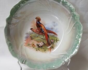 Hand Painted Pheasant Serving Dish, Bowl  (842)