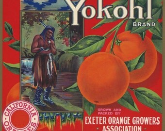 Crate Label Original Yokohl Brand Orange Crate Label Vintage