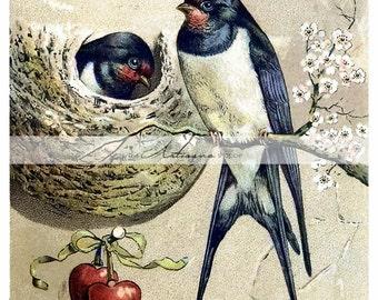Printable Art Instant Download - Swallows Nest Love Heart Vintage Antique Postcard Image - Paper Crafts Scrapbook Altered Art - Valentine's