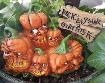 Miniature Scary Pumpkin Patch