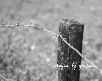 Along the Wire 1