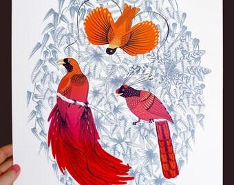 "Screenprint ""paradise birds"""