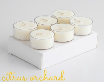 Tealights (6 Pack) - CITRUS ORCHARD