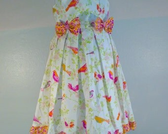 pink birds and bows twirll dress