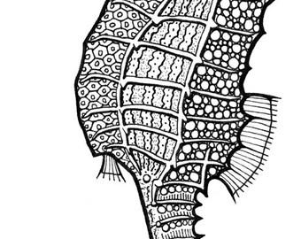 seahorse-fine art print-handrawn-8x10-original drawing-animal print-wall art-beach art