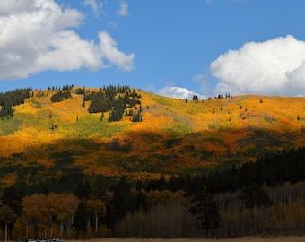 Panoramic Fall Colors