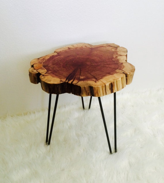 Tree Wood Slice Side End Table With Hairpin Legs by