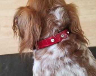 Alligator embossed leather dog collar/ leather dog collar