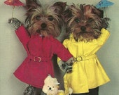 Vintage 1960s Postcard Little Terrier Dog Rainy Day Weather Sweet Puppy Furry Friend Pet Animal Greeting Card Photochrome Era Postmarked