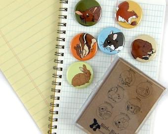 Forest Animal Magnets--Set of 6
