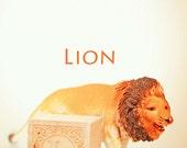 lion art, ABC art, toy photo, child room art, letter art, alphabet photo, alphabet art, nursery art, nursery decor, childs room decor