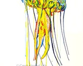 Jellyfish Art Print 8x10 ...
