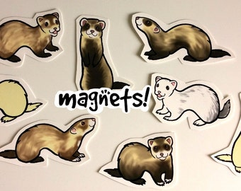 Cute Ferret Decorative Magnets Pack of 8 - Custom Made to Order