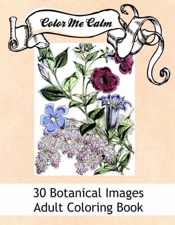 Color Me Calm 30 Botanical Floral Design Patterns Coloring