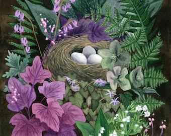 Fine Art Print of Original Watercolor Painting - Garden Nest