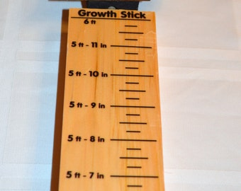 Childrens Dinosaur GIFT Wood Growth Measure Stick  Made in USA ships in 24 hours