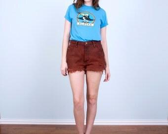 Vintage Alaska Tshirt / Puffins Baby Blue Soft Thin 80's Tee Shirt / Small Medium