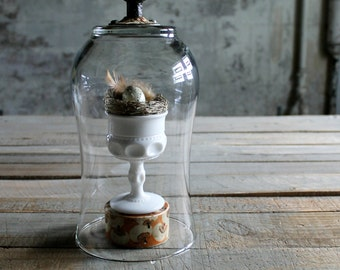 Glass Cloche with White Porcelain Door Knob - Letter F