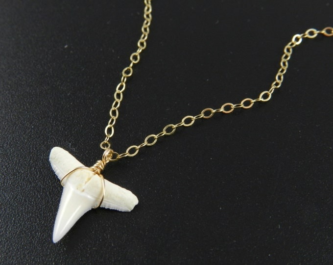 Mako Shark Tooth Necklace, Gold, SIlver, Rose Gold Shark Tooth Necklace, Dainty Delicate Shark Tooth Necklace, Great Layering Necklace