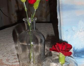 Two Vintage Clear Glass Bottles - Great for Vase - Decor