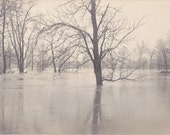 Flooded Forest- 1910s Antique Photograph- Drowned Trees- Flood Photo- Natural Disaster- Real Photo Postcard- AZO RPPC- Paper Ephemera