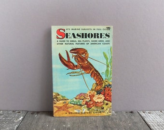 Vintage Seashores Guide Book / Golden Nature Guide Book