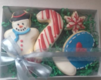 Christmas Cookie Boxed Set, christmas cookies, teacher gift, gift under 15, snowman  cookie, ornament cookie, christmas cookie