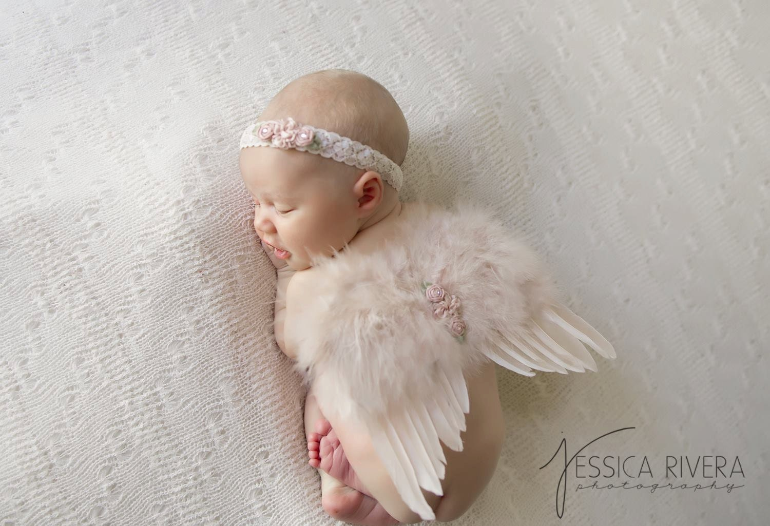Images of baby angels with wings-3661