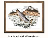"""Salmon Art Print w/Mat (Lake House Wall Decor, Fishermans Gift for Fathers Day) Matted Vintage Fish Art --- """"American Salmon"""" No. 12"""
