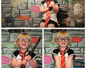 HARRY POTTER Hogwarts House Ties - Great for Photo booth Prop or Party Favors!  Gryffindor, Ravenclaw, Hufflepuff or Slytherin Necktie