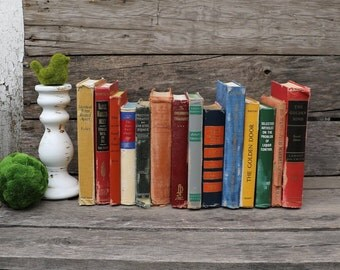 Set of 14 Vintage Books - Antique Book Decor - Photo Props - Wedding Decor - Centerpieces - Blue, Beige, Mustard Yellow, Gold Red Books Old