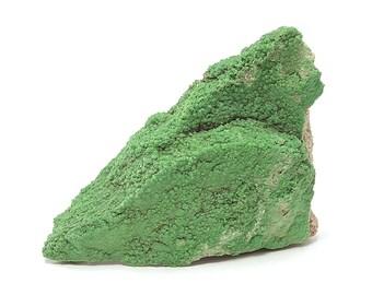 Pyromorphite Grass Green Crystalline Druzy Mineral on Sandstone Rock Matrix, German Geological Specimen