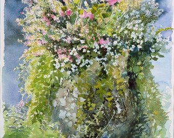 Heligan Pot, pink & white flowers still life, Watercolour Giclée print
