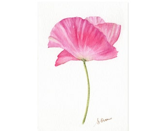 Pink Papaver watercolor painting, Elegant poppy flower illustration, Romantic country decor - 4x6 matted Original art,  ready to hang