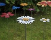 Pollination Flower Stem - Daisy