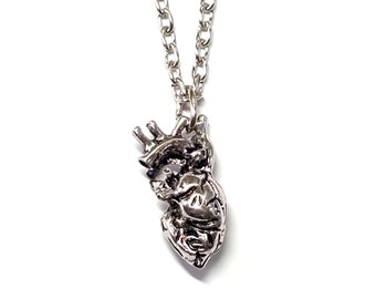 anatomical human heart oddity silver pendant necklace