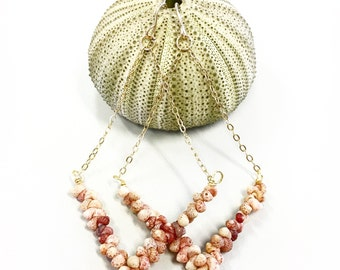 Kahehlelani (Ni'ihau) shell chandelier earrings with gold filled cable chain and earwires