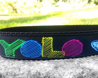 YOLO 1 Inch Width Dog Collar