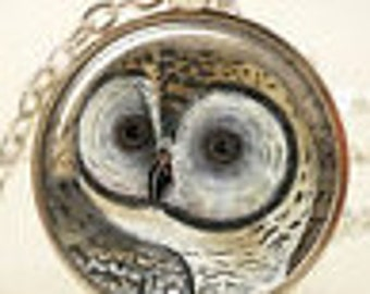 Owl Pendant, Silver Pendant with Glass Dome, 19 inch long Chain included
