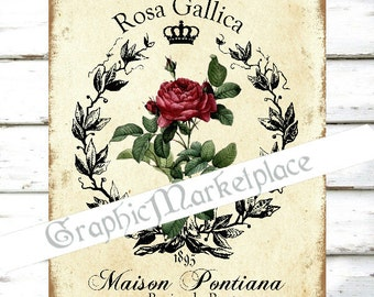 Country Rose Botanical Roses Gallica Redoute Download Transfer to Pillows Burlap digital collage sheet graphic printable No. 806