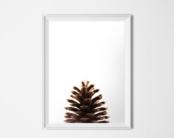 Pine Cone Print, INSTANT DOWNLOAD, Brown Printable Art, Nature Photography, Minimalist Art, Nature Print, Forest Print, Pinecone Poster