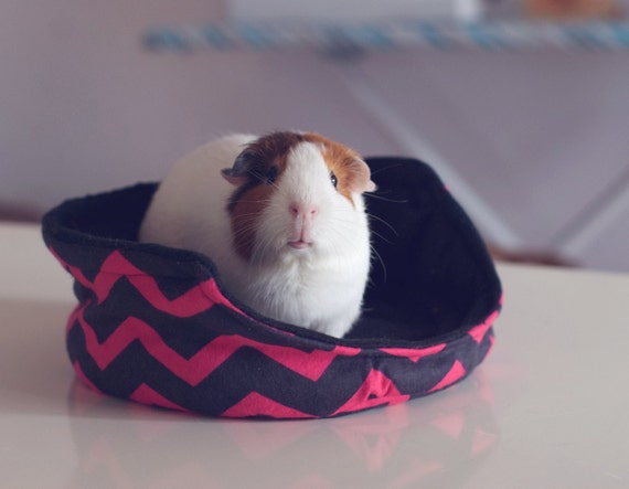 Items similar to on the edge guinea pig cuddle cup with for Guinea pig bed pattern