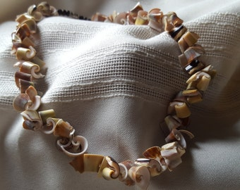 Curly shell necklace and bracelet set.