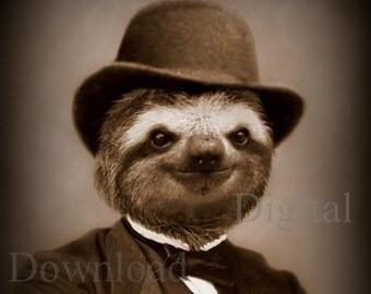 Mr. Sloth Digital Download Photo