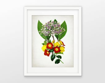 Red And Yellow Flower Print - Flower Art - Botanical Print - Colorful Flower Decor - Flower Art - Single Print #1668 - INSTANT DOWNLOAD
