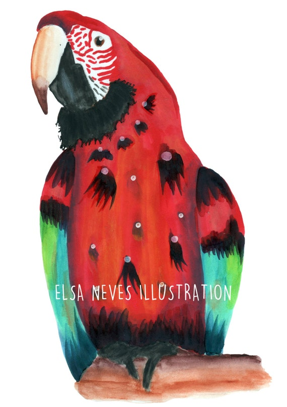 Spotty Red Parrot Art Print