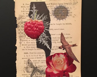 Raspberry & Flower Original Mixed Media Art Work Collage