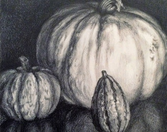 Pumpkin & Gourds - Original graphite drawing by Kathleen Moore